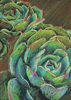 Succulent Painting - Green Echeveria by Athena  Mantle