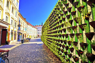 Photograph - Green Eco Wall In Ljubljana City Center by Brch Photography