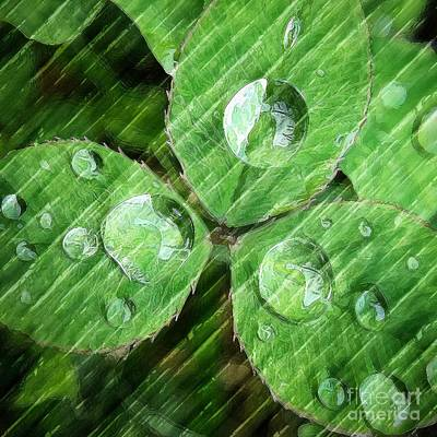 Photograph - Green by Eleanor Abramson