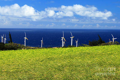 Photograph - Green Energy by James Eddy