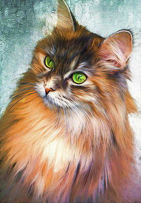 Green-eyed Maine Coon Cat - Remastered Art Print