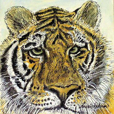 Drawing - Green Eyed Tiger by Laurie Rohner
