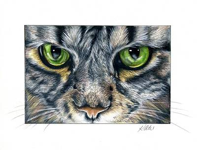 Drawing - Green Eyes by Katie McConnachie