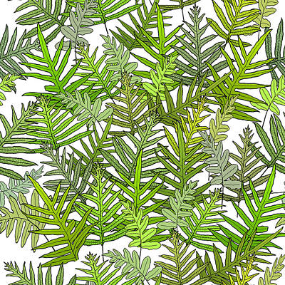 Digital Art - Green Fern Tangle On White by Karen Dyson