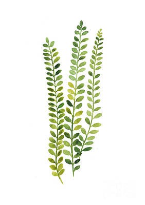 Plants Mixed Media - Green Fern Watercolor Minimalist Painting by Joanna Szmerdt