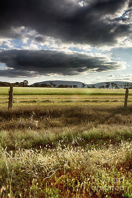 Green Fields 6 Art Print by Douglas Barnard