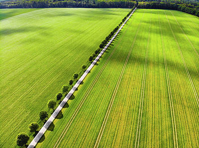 Photograph - Green Fields And Trees From Above Aerial View by Matthias Hauser