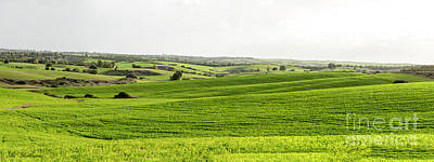Photograph - Green Fields. by Arik Baltinester