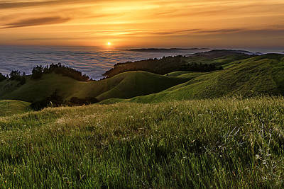 Photograph - Green Fields At Sunset by PhotoWorks By Don Hoekwater