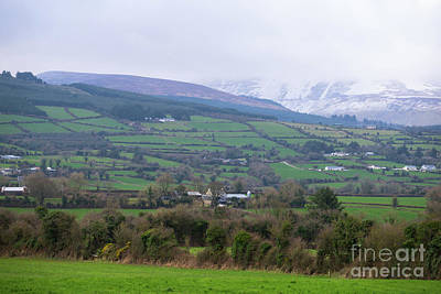 Photograph - Green Fields In Wintry Ireland by Les Palenik