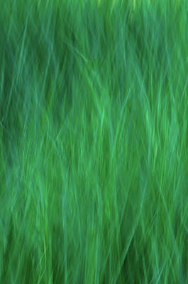 Photograph - Green Fire 2 by Brad Koop