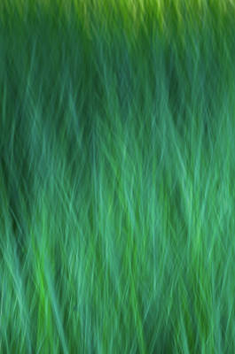 Photograph - Green Fire 3 by Brad Koop