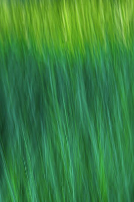 Photograph - Green Fire 4 by Brad Koop