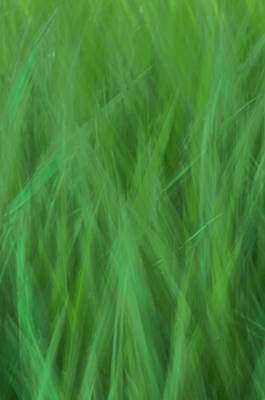 Photograph - Green Fire 8 by Brad Koop