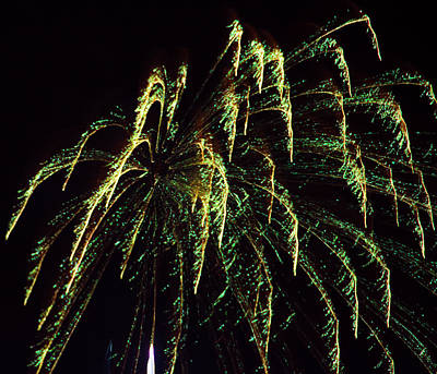 Photograph - Green Fireworks by Yulia Kazansky