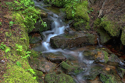 Green Flowing Stream Art Print