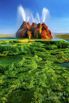 Green Fly Geyser Art Print by Inge Johnsson