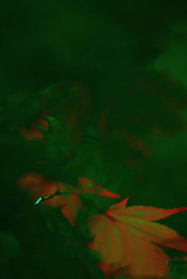 Abstract Shapes Janice Austin Royalty Free Images - Green Foliage Royalty-Free Image by Gary Bartoloni