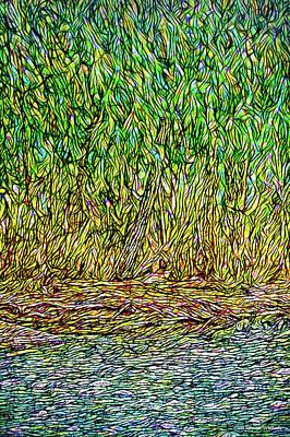 Digital Art - Green Forest Riverbank - Colorado by Joel Bruce Wallach