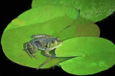 Photograph - Green Frog by Nikolyn McDonald