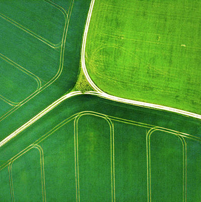 Photograph - Green Geometric Nature With Lines Aerial View by Matthias Hauser