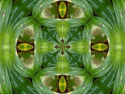 Digital Art - Green Glow by Max DeBeeson