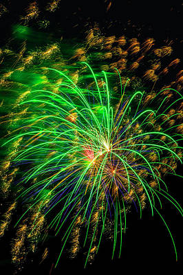 Photograph - Green Gold Fireworks by Garry Gay