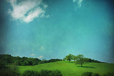Green Grass Blue Sky Art Print by Laurie Search