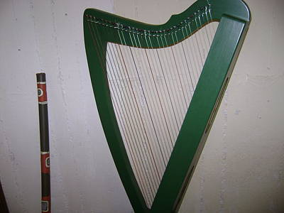 Photograph - Green Harp by Moshe Harboun