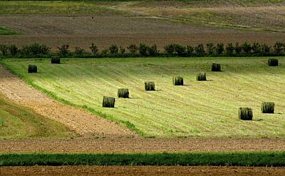 Photograph - Green Hay Bales II by Tana Reiff