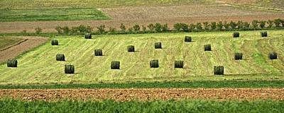 Photograph - Green Hay Bales by Tana Reiff
