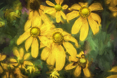 Photograph - Green Headed Coneflowers Painted by Rich Franco