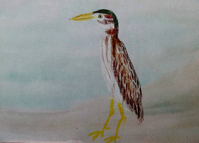 Wall Art - Painting - Green Heron by Helen Krummenacker