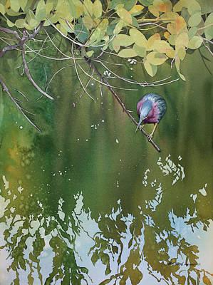 Avian Painting - Green Heron, Red Mangrove by Kris Parins