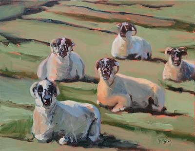 Scottish Blackface Sheep Painting - Green Hill Sheep At Rest by Donna Tuten