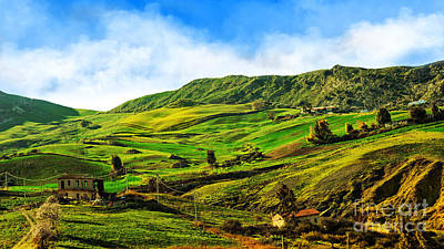 Photograph - Green Hills by Nika Lerman