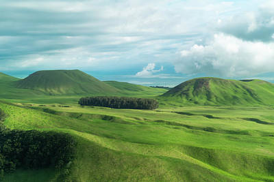 Green Hills On The Big Island Of Hawaii Art Print by Larry Marshall