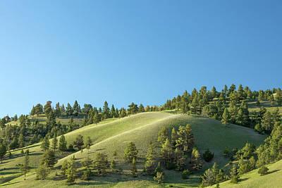 Photograph - Green Hills by Todd Klassy