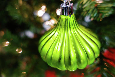 Photograph - Green Holiday Ornament On Tree by SR Green