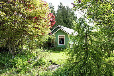 Photograph - Green House Behind Trees by Tom Cochran
