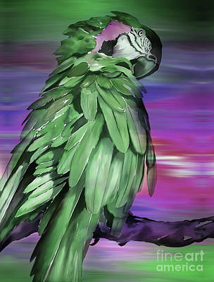 Painting - Green King Parrot by Gull G