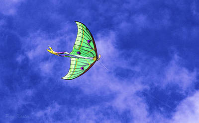 Photograph - Green Kite by Pam Kaster