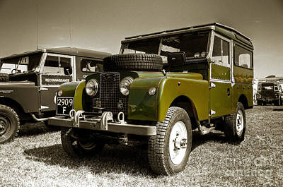 Green Landy Art Print