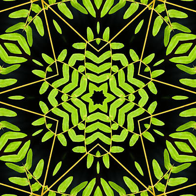 Photograph - Green Leaves Kaleidoscope by Cindi Ressler