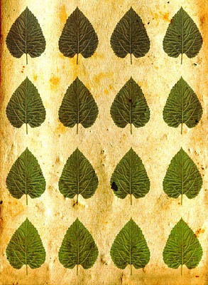 Gothic Photograph - Green Leaves On Vintage Paper by Sumit Mehndiratta