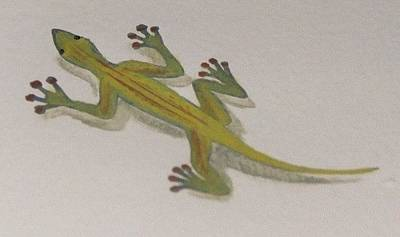 Painting - Green Lizard by Suzn Art Memorial