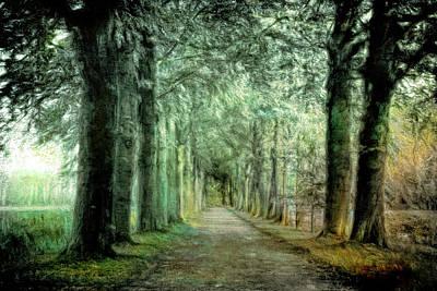 Photograph - Green Magic by Annie Snel