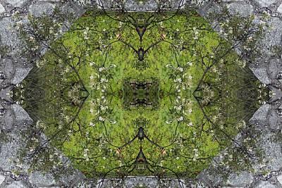 Green Mandala Art Print by Viktor Savchenko