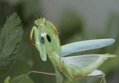 Photograph - Green Mantis With Garden Background Vector by Tracey Harrington-Simpson