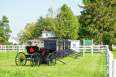Photograph - Green Meadow Buggy Sales by David Arment